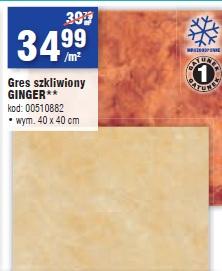 Gres szkliwiony Ginger