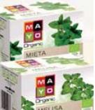 Herbata ekologiczna ziołowa Mayo 20 tb.x 1,5 g