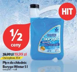 Płyn do chłodnic Borygo Winter 5 l