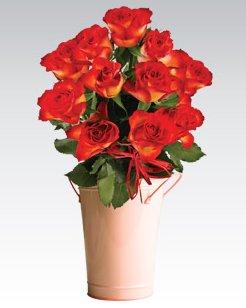 Róże bukiet, 11 szt.