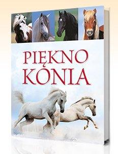 """""""Piękno konia"""""""