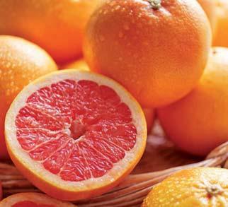 Grejpfrut Floryda słodki i soczysty