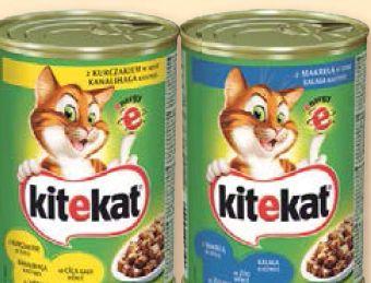 Pokarm dla kotów