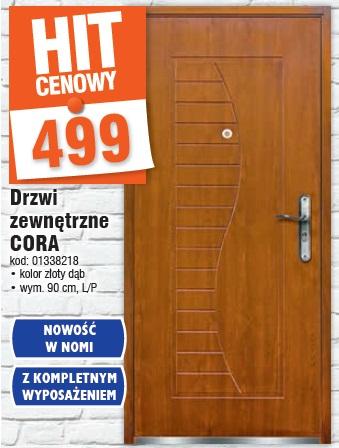 Drzwi zewnętrzne CORA