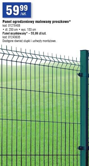 Panel ogrodzeniowy malowany proszkowo