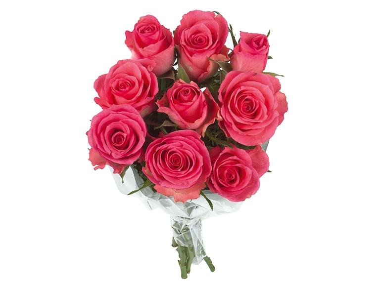 Bukiet róż premium 9 szt.