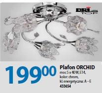 Plafon ORCHID