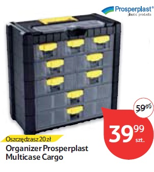 Organizer Prosperplast Multicase Cargo